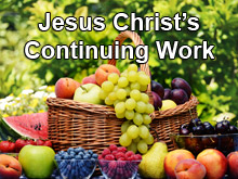 Jesus Christ's Continuing Work