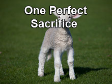 One Perfect Sacrifice