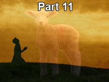 nt-pt11