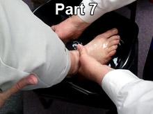 nt-pt7