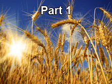 What is the Finished Work of Christ? Part 1