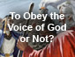 To Obey the Voice of God or Not?